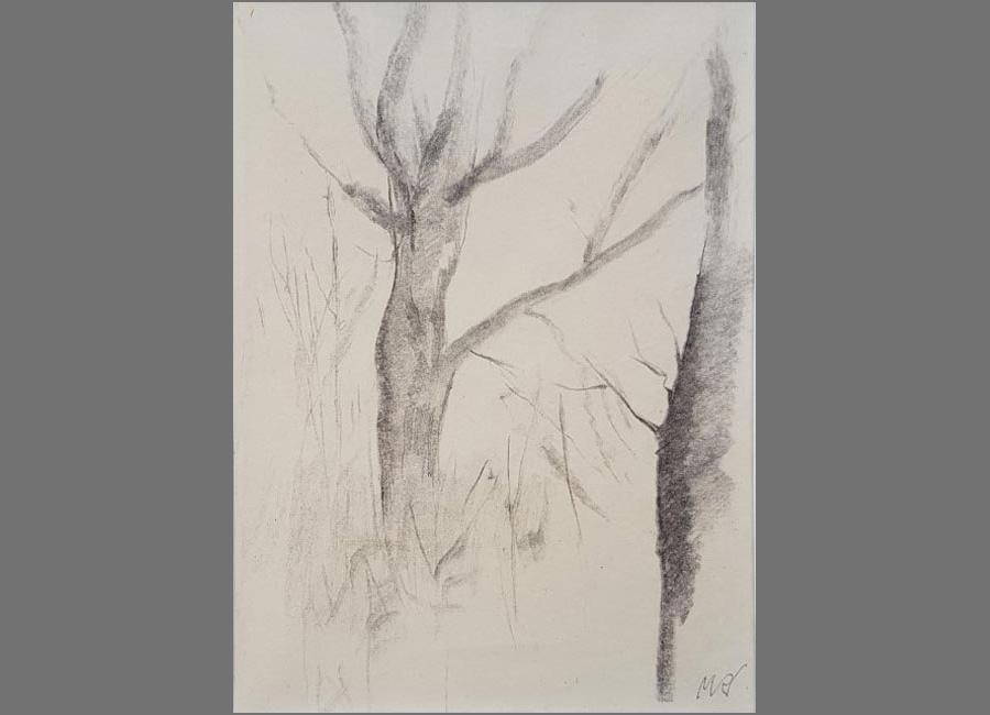 Bäume-II.-Kohle,-19x14cm