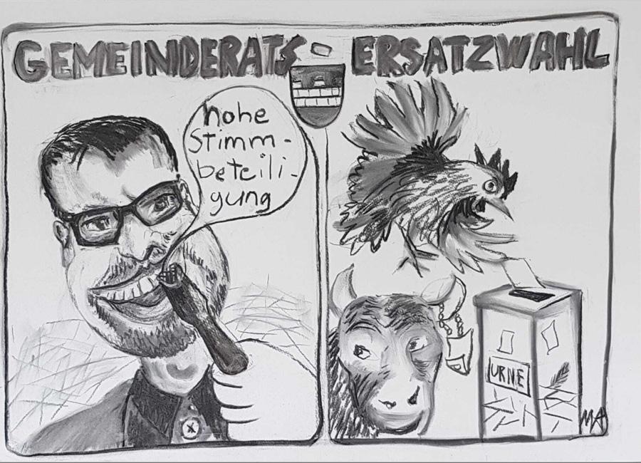 """Gemeinderats-Ersatzwahl Muri / Zeitung """"der Freiämter"""" 2017"""